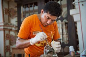 Labores-Chiquitos-Santa-Cruz-Bolivia_LRZIMA20170730_0036_11